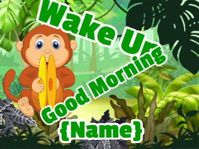 Cymbal banging monkey says good morning