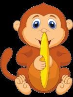 Morse Code Monkey